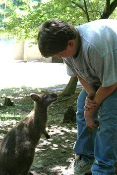 The North Georgia Zoo - myfavoritezoo.com