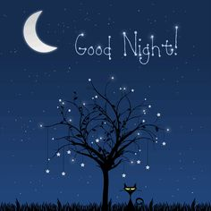 Best Good Night Gif Images in 2019 Good Night Funny, Good Night Friends, Good Morning Good Night, Gud Night Images, Night Pictures, Good Morning Images, Gud Night Wishes, Good Night Greetings, Good Night Prayer