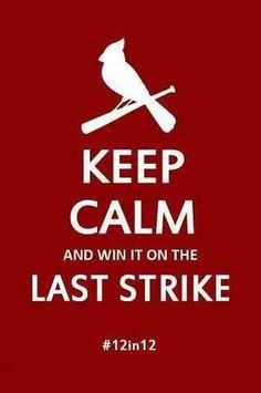 <3 The STL Cardinals