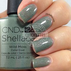 CND Shellac Wild Moss - swatch by Chickettes.com