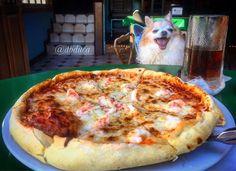 #SanFelipe un lugar lleno de #colores, #olores y #sabores #Pizza #Pet #goodvibes #goodday #goodtimes #chil #relax #tranquis #love #friendship #morning #Baja #Mexico  Foto-aventura por dbduca