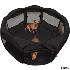 Oxgord Cat/ Dog Play Pen Comfort Travel Portable Pet Playpen |  Overstock.com Shopping