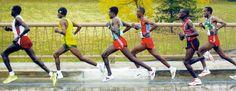 How To Improve Running Speed: Step Frequency and Step Length : Runners Connec How To Improve Running, How To Run Faster, How To Run Longer, Running Tips, Running Training, Marathon Training, Triathlon Training, Running Quotes, Training Plan