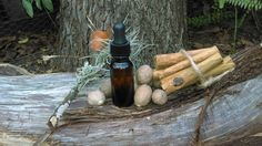 Mulled Cider Organic essential oil 1/2oz by LaughingLilyHerbs