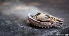 """STUDY SHOWS HOW SMUDGING DOES A LOT MORE THAN JUST """"CLEAR EVIL SPIRITS"""" 