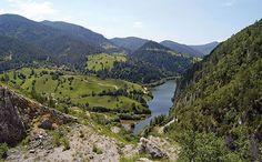 Mountain beauty: Tara, Serbia