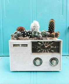 Repurposed vintage radio by Botanical Project