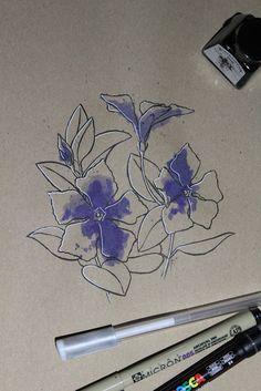 "Day 19: Cancroia (Vincaperinca) ""Vinca major""  #InkTober #InkTober2016 #InkToberEspaña #FloraDaGaliza Inktober, Drawings, Sketches, Drawing, Portrait, Draw, Grimm, Illustrations"