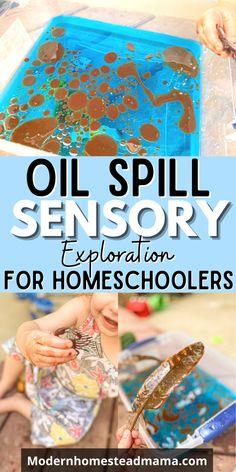 Sensory Activities For Preschoolers, Seasons Activities, Preschool Learning Activities, Preschool At Home, Preschool Activities, Summer Activities, Sensory Bins, Sensory Play, Special Needs Teacher