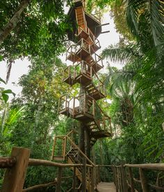 Het is het klimmen waard :-) Treehouse, boomhut, luxe, glamping - Glamping.nl