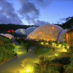 Biomes lit up in early evening sky