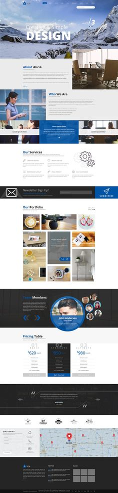 Alicia - Multipurpose PSD Template