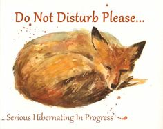 FOX Do Not Disturb Sign teen boy gift layabout by eastwitching, $18.00