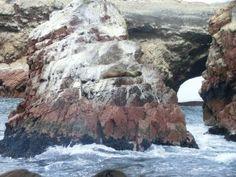 Rezerwat Przyrody Paracas