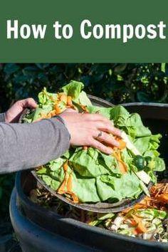 Composting 101 :: Tu