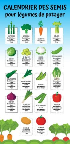 Planting calendar for vegetable garden Je Jardine