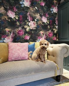 Our take on the 'Dutch Masters' moody floral look. Ava Marika is a dark, expressive floral originating from Lancashire with rouge red and blush pink flowers SHOP NOW Floral Print Wallpaper, Bold Wallpaper, Unique Wallpaper, Wallpaper Samples, Wallpaper Roll, Floral Prints, Loft Conversion Victorian Terrace, Wall Murals Uk, Neutral Paint