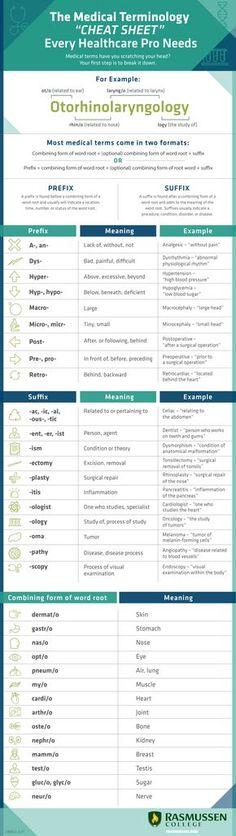 Medical Coding  Medical Coding Medical And Essentials