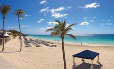 Elbow Beach Bermuda // Go To Bermuda. An oceanfront enclave of classic style and contemporary luxury located on 50 acres of beachfront property.