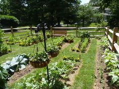 Vegetable Garden Fence | ... and build a vegetable garden for you to cultivate in Chester County