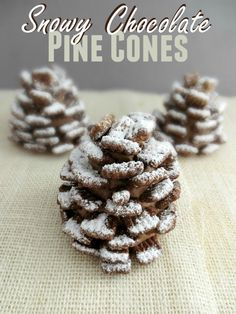 These Snowy Chocolate Pine Cones are a fun treat for any holiday or winter themed party. They are pretty quick and easy to put to put together but delicious too!for the little boy that loves pinecones Christmas Desserts, Christmas Treats, Holiday Treats, Holiday Recipes, Christmas Cookies, Winter Desserts, Christmas Foods, Christmas Recipes, Holiday Fun