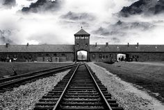 Europe died in Auschwitz. Killed were millions of Jews and Europe replaced them with 20 million Moslems. In Auschwitz a culture was burned with thought, creativity and talent. Destroyed because they produced great and wonderful people who changed the worl