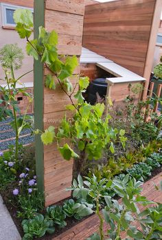 Get The Garden Of Your Dreams With These Tips | Happy House and Garden Social Site