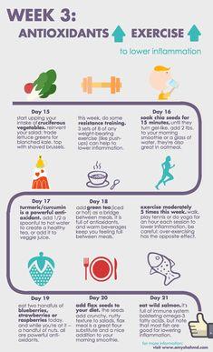WK3- Antioxidants-Exercise