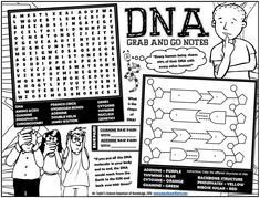 Grab-and-Go Notes: DNA Activities and Games Worksheet Science Education, Higher Education, Fun Worksheets, Content Area, Substitute Teacher, Activity Sheets, Teacher Newsletter, Teacher Pay Teachers, Homework