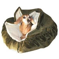 just perfect for dachshunds that like to burrow