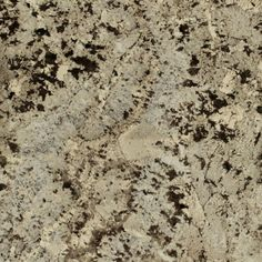 Mega Granite   Granite Countertop Specialist   Royal White