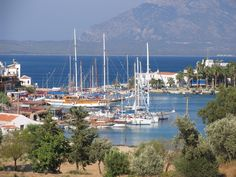 Datca harbour - there is allegedly a different bay to explore for every week of the year! Sailing Day, Allegedly, San Francisco Skyline, Turkey, Explore, Travel, Viajes, Turkey Country, Destinations