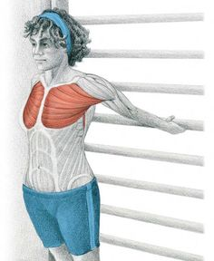 Starting Stretching – 53 Full Body Stretches for Beginners In our previous article The Art of Stretching we presented 36 illustrations in color with stretches for specific muscles. We now continue with more illustrations Body Stretches, Stretching Exercises, Flexibility Exercises, Scoliosis Exercises, Health Tips, Health And Wellness, Health Fitness, Fitness Diet, Fitness Workouts