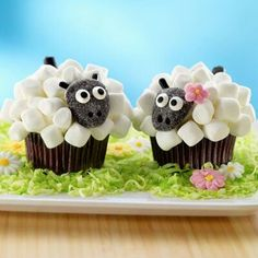 Cute sheep cupcakes