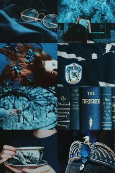 Estilo Harry Potter, Harry Potter Room, Harry Potter Houses, Harry Potter Fan Art, Hogwarts Houses, Harry Potter World, Ravenclaw, Hufflepuff Pride, Narnia