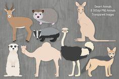 Desert Animal Illustration Set. #antelope #hedgehog #kangaroo #meerkat #badger…