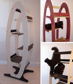 Love this whisker studios cat tree-must replicate in our new place. When we actually find one