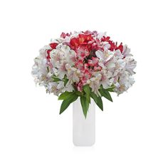 Alstroemeria Bouquet - EbloomsDirect #roses,#pink,#flowers,#gardening,#plants,#love,#bridal,#holidays,#gift,#party,#fasshion,#christmas,#homedecor,#events,#fashion,#style,#onlineshopping,#online,#oprah,#usa,#costco,#art,#texas,#washingtondc,#newyork,#atlanta,#family,#lasvegas,#orlando,#chicago,#sandiego,#california,#sanfrancisco,#houston,#design,#losangeles,#fall,#summer,#winter, #spring, #hydrangeas