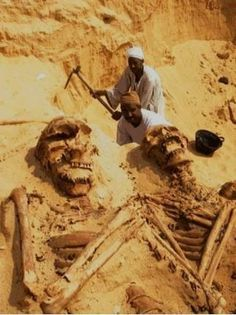 Historical Giant Skeletons of Add People. Historical Giant Skeletons of more then 4000 years old people, who were known as Qaum-e-Aad.  Recently a gas exploration activity in the south east region of the Saudi Arabian Desert discovered skeletons of a human of phenomenal size. This region of the Saudi Arabian Desert is called the empty quarter and in Arabic 'Rab-Ul-Khalee'. This disclosure was made by the ARAMCO exploration team
