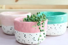 My three dotty pots They are all hand built (without a wheel) which means each pot is completely unique, never 'perfect' but full…