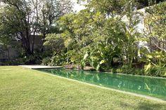 Criado pelo paisagista Rodrigo Oliveira, jardim monocromático, com o charme das folhas de desenhos e texturas diferentes, tem parede formada de palmeira, manacá-da-serra, cássia-javanesa e quaresmeira, entre outras.
