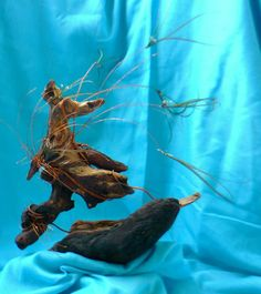 One Moment in time..... burnt wood, copper, feathers, coconut oil loved the movement and emotion it conveys, depending upon one's thoughts, this piece morphs once again... loved creating it, love to view it often...it now has a home....with a lovely lady