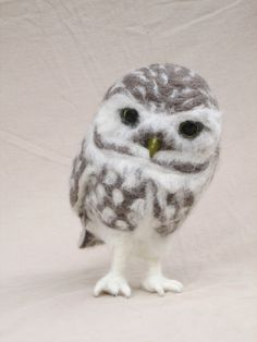 Needle Felted Owl  Burrowing Owl Adult  Bird Art by PlainsSong, $150.00