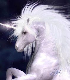 *UNICORN #unicorn