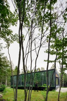 The fully glazed wall provides views of the forest from inside.