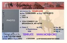 Template Wyoming drivers license editable photoshop file .psd