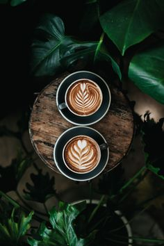 The Most Satisfying Cappuccino Latte Art - Coffee Brilliant Coffee Art, Coffee Cups, Coffee Tables, Coffee Thermos, Momento Cafe, Deco Cafe, Cappuccino Machine, Coffee Pictures, Latte