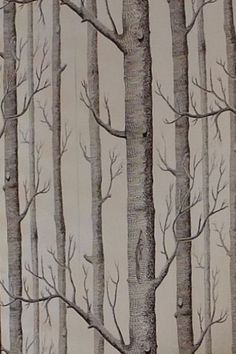 Woods Foil (69/12150) - Cole & Son Wallpapers - Woods (Michael Clark 1959): A striking design sketched from trees and branches on a silver foil, sorry foil effect doesn't show well in image. paste the wall wallcovering. Available in other colours. Please ask for sample for true colour match.