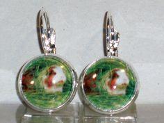 Ohrringe Meerschweinchen Tiere Schwein Damen Hänger Leverback Ohrschmuck Glas