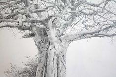 tree pencil drawing - Google 搜索